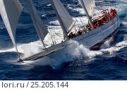 Купить «Mega yacht racing in 2013 St. Barths Bucket Regatta, March 2013, Caribbean. All non-editorial uses must be cleared individually.», фото № 25205144, снято 27 июня 2019 г. (c) Nature Picture Library / Фотобанк Лори