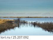 Купить «View over flooded grazing marsh after the 6 December east coast tidal surge, Burnham Norton, Norfolk, England, UK, December 2013.», фото № 25207092, снято 27 февраля 2020 г. (c) Nature Picture Library / Фотобанк Лори