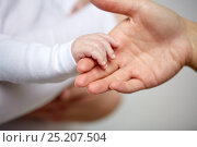 Купить «close up of mother and newborn baby hands», фото № 25207504, снято 23 ноября 2016 г. (c) Syda Productions / Фотобанк Лори