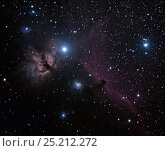 Купить «Flame Nebula (NGC 2024) in the Orion Constellation with the Horsehead Nebula to the right.  This image was taken on October 7, 2013 from eastern Colorado, USA, with digital focus stacking.», фото № 25212272, снято 7 октября 2013 г. (c) Nature Picture Library / Фотобанк Лори