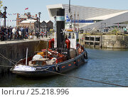 Купить «Historic steam tug, 'Kerne', moored in Canning dock, Liverpool, during the 70th Commemoration of the Battle of the Atlantic. Liverpool, Merseyside, England...», фото № 25218996, снято 15 августа 2018 г. (c) Nature Picture Library / Фотобанк Лори