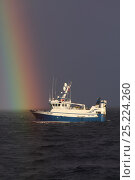 Купить «North Sea trawler 'Ocean Harvest' with rainbow, North Sea, May 2013. All non editorial uses must be cleared individually.», фото № 25224260, снято 25 мая 2020 г. (c) Nature Picture Library / Фотобанк Лори