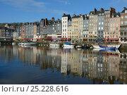 Купить «Honfleur harbour with boats and buildings reflected in the water, France, March 2013», фото № 25228616, снято 22 мая 2018 г. (c) Nature Picture Library / Фотобанк Лори