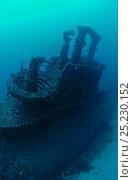 Купить «Wreck of the Royal Navy 'S' Class submarine HMS Stubborn, Sunk as ASDIC target 30th August 1946, Malta», фото № 25230152, снято 17 августа 2018 г. (c) Nature Picture Library / Фотобанк Лори