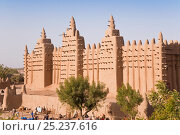 Djenne Mosque, the largest mud structure in the world, Djenne is a UNESCO World Heritage Site, Niger Inland Delta, Mopti Region, Mali 2006. Стоковое фото, фотограф Gavin Hellier / Nature Picture Library / Фотобанк Лори