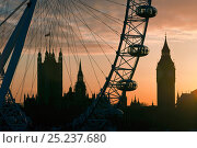 Millennium Ferris Wheel - London Eye and Big Ben, silhouetted at sunset, London, UK 2008. Стоковое фото, фотограф Gavin Hellier / Nature Picture Library / Фотобанк Лори