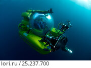 Mike de Gruy, underwater camerman, in Remora submersible, Mediterranean. Стоковое фото, фотограф Michael Pitts / Nature Picture Library / Фотобанк Лори