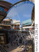 Купить «Inside Cabot Circus, constructed at a cost of £500 million, is an architectural masterpiece. The shopping centre's glass roof equal in size to one and a half football pitches, Bristol, Avon, UK 2009», фото № 25238216, снято 17 августа 2018 г. (c) Nature Picture Library / Фотобанк Лори