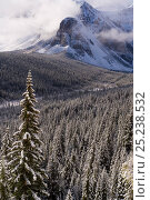 Купить «Wenkchemna Peaks or Ten Peaks rising over Moraine lake in the snow, near Lake Louise, Banff National Park, Alberta, Canada, 2007», фото № 25238532, снято 15 августа 2018 г. (c) Nature Picture Library / Фотобанк Лори