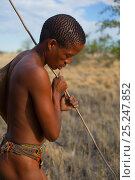 Купить «A young Zu/'hoasi Bushman hunter looks for Spring Hare (Pedetes capensis) burrows on the plains of the Kalahari. The long stick has a hook on the end and...», фото № 25247852, снято 22 апреля 2019 г. (c) Nature Picture Library / Фотобанк Лори