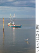 Купить «Small boats moored at Meols, Wirral, Merseyside, England, October 2012.», фото № 25249308, снято 17 августа 2018 г. (c) Nature Picture Library / Фотобанк Лори