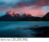 The blue green waters of Lago Pehoe, with the sunset light on Los Cuernos del Paine, in Torres del Paine National Park, Chile. Стоковое фото, фотограф Jack Dykinga / Nature Picture Library / Фотобанк Лори