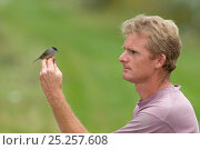 Man holding male Blackcap (Sylvia atricapilla) caught in net for ringing in allotment, Grande-Synthe, Dunkirk, France, September 2010, model released. Стоковое фото, фотограф Wild Wonders of Europe / Préau / Nature Picture Library / Фотобанк Лори