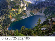 Купить «Lake Ann surrounded by Douglas firs (Pseudotsuga menziesii) Silver firs (Abies alba) and other conifers in the area of Rainy Pass of North Cascades National...», фото № 25262180, снято 14 августа 2018 г. (c) Nature Picture Library / Фотобанк Лори