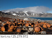 Купить «Rusty barrels at the historical site of Virgohamna where, in 1897, the hydrogen balloon 'Omen' (the Eagle) sailed northward in a failed attempt to reach...», фото № 25279972, снято 22 апреля 2018 г. (c) Nature Picture Library / Фотобанк Лори