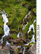 Купить «Gavarnie Falls, cascades down moss covered rocks, Pyrenees, France, June 2011.», фото № 25280564, снято 21 августа 2018 г. (c) Nature Picture Library / Фотобанк Лори