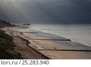 Купить «Coastline with pier and groynes from Overstrand to Cromer with storm clouds overhead, Norfolk, UK, July 201», фото № 25283940, снято 21 августа 2019 г. (c) Nature Picture Library / Фотобанк Лори