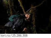 Купить «Photographer Tim Laman triggers camera trap to test it. Foja Mountains, Papua, Indonesia, 2008. (taken during Conservation International Rapid Assessment Program expedition)», фото № 25286308, снято 22 сентября 2019 г. (c) Nature Picture Library / Фотобанк Лори