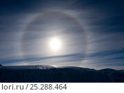 Купить «Sun Dog, or Parhelion, caused by refraction of the sun's rays, more commonly seen in Antarctica, above glacier, Dry Valleys, Antarctica, December 2009...», фото № 25288464, снято 23 июля 2018 г. (c) Nature Picture Library / Фотобанк Лори
