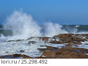 Купить «Waves crashing onto rocks along the Normandy coast, France, October 2010.», фото № 25298492, снято 17 августа 2018 г. (c) Nature Picture Library / Фотобанк Лори
