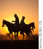 Купить «Silhouette of two traditionally dressed Indian riders, mounted on Kathiawari mares, backlit at sunset, in Gujarat, India, January 2011, Model released», фото № 25301172, снято 18 января 2020 г. (c) Nature Picture Library / Фотобанк Лори