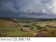Купить «Rainbow over Great Fryup Dale, North Yorkshire National Park, Yorkshire, UK, July», фото № 25308116, снято 15 декабря 2017 г. (c) Nature Picture Library / Фотобанк Лори