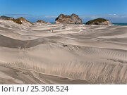 Купить «Beach and sand dunes at Farewell Spit Nature Reserve, South Island, New Zealand», фото № 25308524, снято 17 декабря 2017 г. (c) Nature Picture Library / Фотобанк Лори