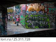 Купить «Grafitti artist at work, South Bank, London, UK», фото № 25311728, снято 24 мая 2018 г. (c) Nature Picture Library / Фотобанк Лори