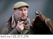 Golden Eagle (Aquila chrysaetos) with falconer Andy Hughes. Glenfeshie, Scotland, February. Стоковое фото, фотограф Pete Cairns / Nature Picture Library / Фотобанк Лори