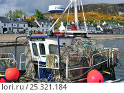 Купить «Fishing boat loaded with lobster creels / traps, Ullapool harbour, Highlands, Scotland, UK, May 2010», фото № 25321184, снято 19 ноября 2018 г. (c) Nature Picture Library / Фотобанк Лори