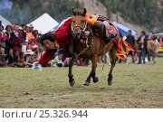 Купить «A Khampa warrior, mounted on his running Tibetan horse, tries to catch sweets laid out on the ground, during the horse festival, near Huangyan, in the...», фото № 25326944, снято 16 февраля 2020 г. (c) Nature Picture Library / Фотобанк Лори