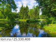 Летний пейзаж у озера, фото № 25330408, снято 9 июля 2016 г. (c) Megapixx / Фотобанк Лори