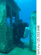 Купить «Cameraman Mike Pitts filming underwater for the BBC series 'Life' in a sunken tug boat, off the coast of the Bahamas, Caribbean, February 2007», фото № 25333648, снято 13 декабря 2017 г. (c) Nature Picture Library / Фотобанк Лори