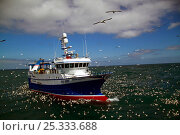 """Купить «""""Ocean Harvest """" fishing on the North Sea, surrounded by seabirds, June 2010. Property released.», фото № 25333688, снято 30 марта 2020 г. (c) Nature Picture Library / Фотобанк Лори"""