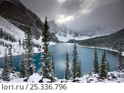 Купить «Morraine Lake, in the Valley of the Ten Peaks, after recent snowfall, Banff National Park, Alberta, Canada. October 2009», фото № 25336796, снято 31 мая 2020 г. (c) Nature Picture Library / Фотобанк Лори