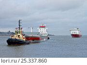 Купить «Tug towing tanker, manoeuvring around midriver to enter Alfred Dock. Birkenhead, England, June 2010.», фото № 25337860, снято 17 июля 2018 г. (c) Nature Picture Library / Фотобанк Лори
