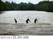Купить «Surfers on the bore. Severn Estuary. England», фото № 25341608, снято 24 мая 2018 г. (c) Nature Picture Library / Фотобанк Лори
