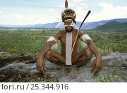 Купить «Portrait of Dani man, sitting with painted face, head-dress, nose adornment made of bone, and penis case, Baliem valley, West Papua, former Irian-Jaya, Indonesia, August 2002 (West Papua).», фото № 25344916, снято 27 мая 2019 г. (c) Nature Picture Library / Фотобанк Лори