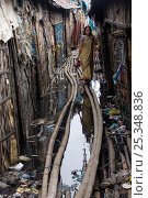 Купить «Woman walking through polluted slum, Dhaka, Bangladesh, July 2008», фото № 25348836, снято 17 июля 2018 г. (c) Nature Picture Library / Фотобанк Лори