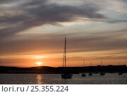 Купить «Sunset over anchorage, ile-d'Houat, Brittany, France, August 2009.», фото № 25355224, снято 17 августа 2018 г. (c) Nature Picture Library / Фотобанк Лори