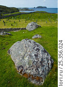 Купить «Cemetery near Bostadh beach, Great Bernera, Lewis, Outer Hebrides, Scotland, UK, June 2009», фото № 25356024, снято 22 августа 2018 г. (c) Nature Picture Library / Фотобанк Лори