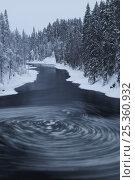 Купить «Whirlpool with pieces of ice in water, Kitkajoki River, Kuusamo, Oulanka National Park, Finland, February 2009», фото № 25360932, снято 21 июля 2018 г. (c) Nature Picture Library / Фотобанк Лори