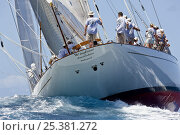 Купить «Saint Barths Bucket Super Yacht Regatta, Caribbean, March 2009.», фото № 25381272, снято 4 декабря 2019 г. (c) Nature Picture Library / Фотобанк Лори