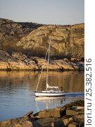 Купить «Hallberg-Rassy 372 cruising in archipelago around Orust, western Sweden, April 2009.», фото № 25382516, снято 20 сентября 2018 г. (c) Nature Picture Library / Фотобанк Лори