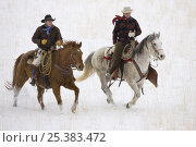 Купить «Two cowboys riding in snow, Flitner Ranch, Shell, Wyoming, USA Model released», фото № 25383472, снято 26 мая 2018 г. (c) Nature Picture Library / Фотобанк Лори