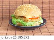 Купить «Гамбургер с котлетой, сыром и овощами», фото № 25385272, снято 11 февраля 2017 г. (c) Елена Коромыслова / Фотобанк Лори