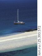 Купить «JFA 54 boat moored beside sand bar, Glenan Archipelago, Finistere, France», фото № 25393572, снято 11 декабря 2018 г. (c) Nature Picture Library / Фотобанк Лори