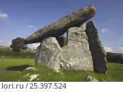 Купить «Trethevy Quiot, a Neolithic burial chamber, Bodmin Moor, Cornwall, UK», фото № 25397524, снято 20 октября 2018 г. (c) Nature Picture Library / Фотобанк Лори