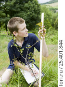 Купить «School boy measuring how much a young sapling tree has grown, UK», фото № 25401844, снято 7 апреля 2020 г. (c) Nature Picture Library / Фотобанк Лори
