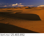 Sand dunes at Erg Chebbi, Sahara desert, Tafilalt, Morocco. Стоковое фото, фотограф Oriol Alamany / Nature Picture Library / Фотобанк Лори